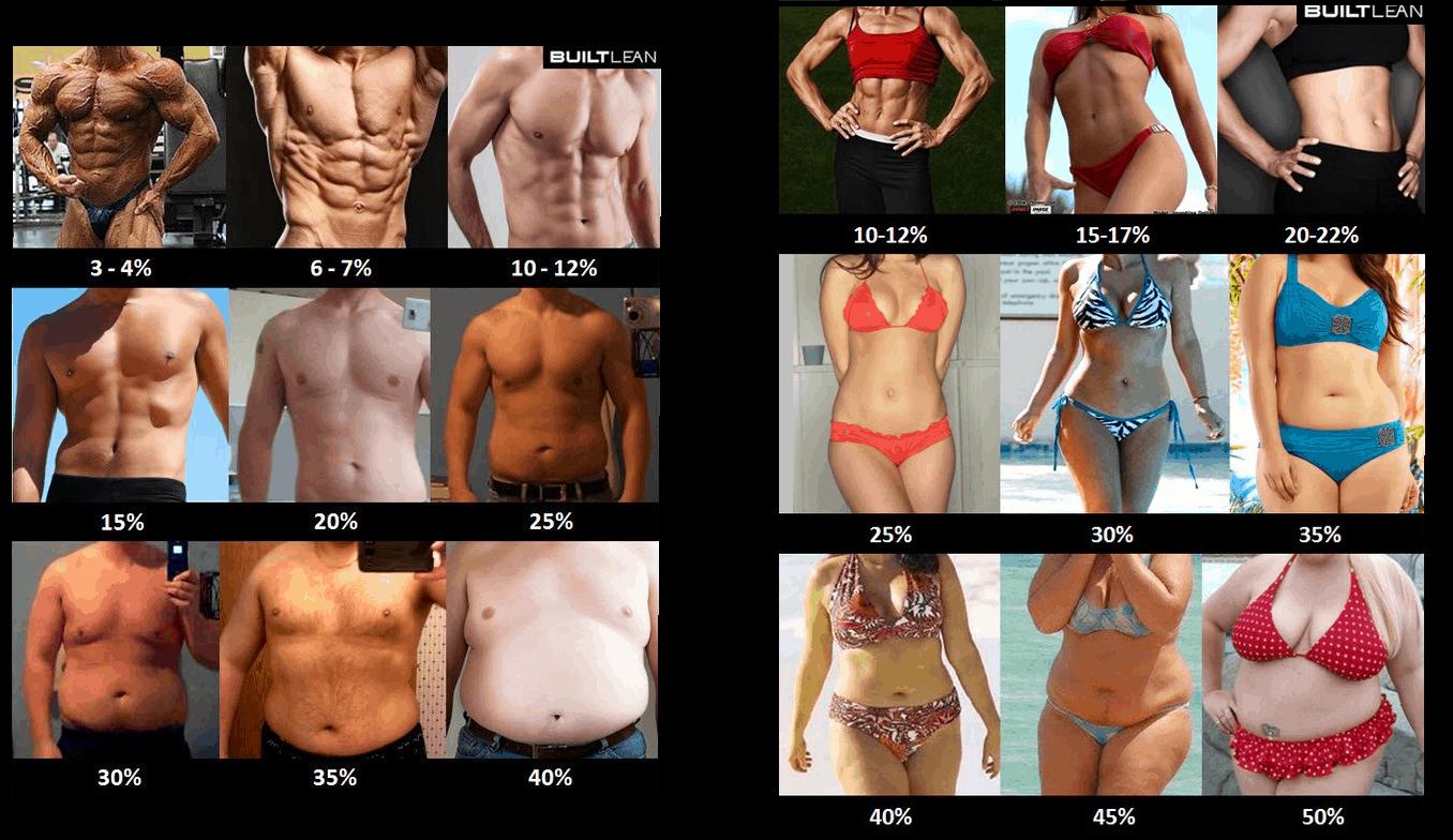 ¿Es real mi porcentaje de grasa?